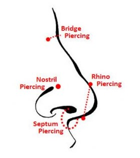 Nose piercing locations